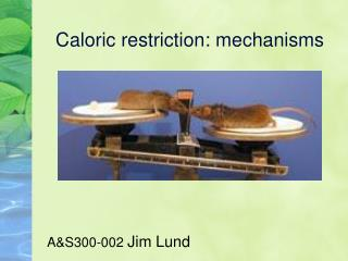 Caloric restriction: mechanisms