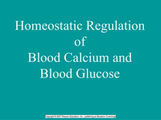 Homeostatic Regulation of  Blood Calcium and Blood Glucose