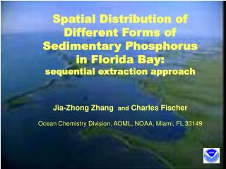 Spatial Distribution of  Different Forms of  Sedimentary Phosphorus  in Florida Bay: