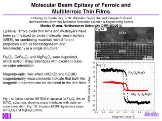 Molecular Beam Epitaxy of Ferroic and  Multiferroic Thin Films