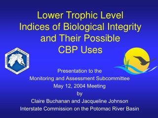 Lower Trophic Level  Indices of Biological Integrity  and Their Possible  CBP Uses