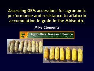 Assessing GEM accessions for agronomic performance and resistance to aflatoxin