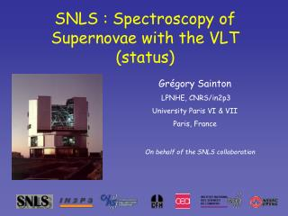 SNLS : Spectroscopy of Supernovae with the VLT (status)