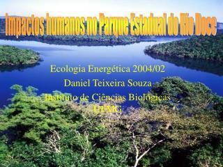 Ecologia Energética 2004/02 Daniel Teixeira Souza Instituto de Ciências Biológicas  UFMG