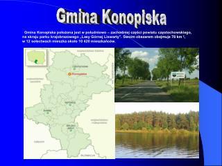 Gmina Konopiska położona jest w południowo – zachodniej części powiatu częstochowskiego,