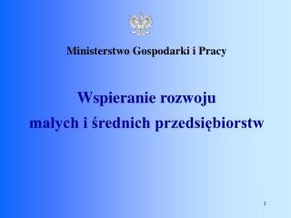 Ministerstwo Gospodarki i Pracy Wspieranie rozwoju małych i średnich przedsiębiorstw