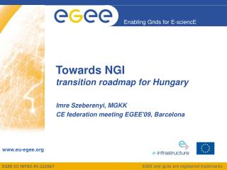 Towards NGI transition roadmap for  Hungary