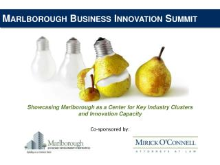 Marlborough Business Innovation Summit