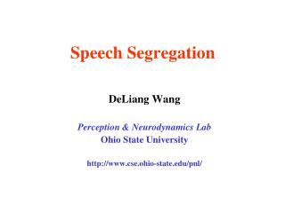 Speech Segregation