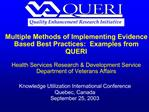 Multiple Methods of Implementing Evidence Based Best Practices:  Examples from QUERI  Health Services Research  Developm