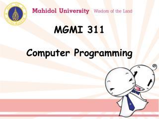 MGMI 311  Computer Programming