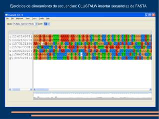 Ejercicios de alineamiento de secuencias: CLUSTALW insertar secuencias de FASTA