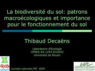 La biodiversit  du sol: patrons macro cologiques et importance pour le fonctionnement du sol