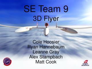 SE Team 9 3D Flyer