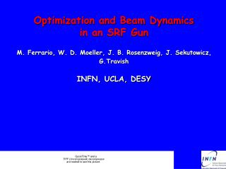 Optimization and Beam Dynamics  in an SRF Gun