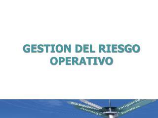 GESTION DEL RIESGO OPERATIVO