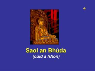 Saol an Bhúda (cuid a hAon)