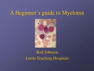A Beginner�s guide to Myeloma