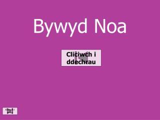 Bywyd Noa