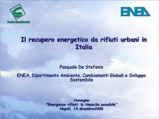 Pasquale De Stefanis ENEA, Dipartimento Ambiente, Cambiamenti Globali e Sviluppo Sostenibile
