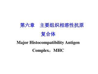 第六章主要组织相溶性抗原 复合体 Major Histocompatibility Antigen Complex,MHC