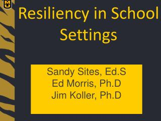 Resiliency in School Settings