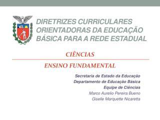 DIRETRIZES CURRICULARES ORIENTADORAS DA EDUCAÇÃO BÁSICA PARA A REDE ESTADUAL