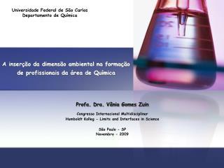 A inserção da dimensão ambiental na formação de profissionais da área de Química