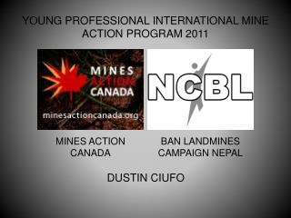 YOUNG PROFESSIONAL INTERNATIONAL MINE ACTION PROGRAM 2011