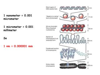 1 nanometer = 0.001 micrometer 1 micrometer = 0.001 millimeter So 1 nm = 0.000001 mm