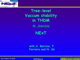 Tree-level Vac cum  stability  in THDM R. Santos NExT