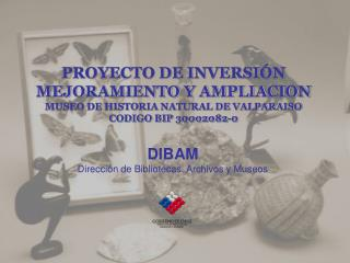 DIBAM Dirección de Bibliotecas ,  Archivos y Museos