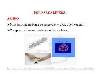 POLISSACARÍDEOS   AMIDO Mais importante fonte de reserva energética dos vegetais