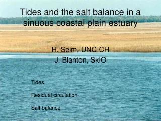 Tides and the salt balance in a sinuous coastal plain estuary