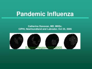 Pandemic Influenza Catherine Donovan, MD. MHSc. CIPHI, Newfoundland and Labrador, Oct 25, 2005