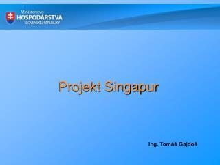 Projekt Singapur