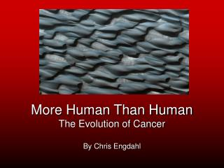 More Human Than Human The Evolution of Cancer By Chris Engdahl