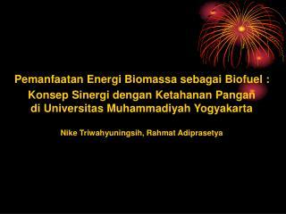 Pemanfaatan Energi Biomassa sebagai Biofuel : Konsep Sinergi dengan Ketahanan Pangan