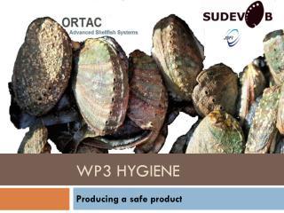 WP3 Hygiene