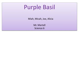 Purple Basil Miah , Micah, Joe, Alicia  Mr. Martell  Science 6