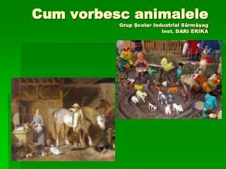 Cum vorbesc animalele Grup Școlar Industrial Sărmășag inst. DARI ERIKA