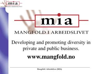 Developing and promoting diversity in private and public business. mangfold.no