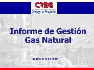 Informe de Gesti�n Gas Natural