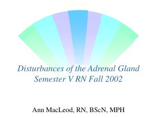 Disturbances of the Adrenal Gland Semester V RN Fall 2002