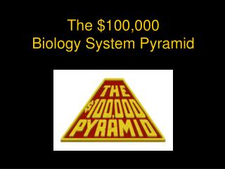 The $100,000 Biology System Pyramid