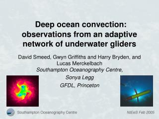 Deep ocean convection: observations from an adaptive network of underwater gliders