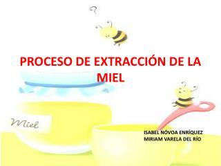 PROCESO DE EXTRACCI�N DE LA MIEL