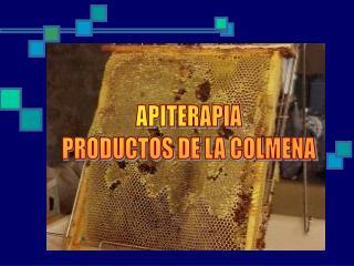APITERAPIA PRODUCTOS DE LA COLMENA