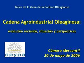 Cámara Mercantil 30 de mayo de 2006