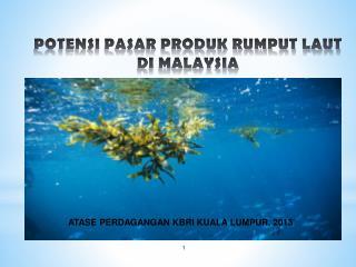 POTENSI PASAR PRODUK RUMPUT LAUT DI MALAYSIA